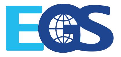 IConEGS 2020-Summer